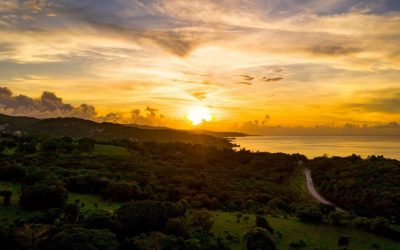 Tips for Traveling to Montego Bay, Jamaica, During the COVID-19 Pandemic